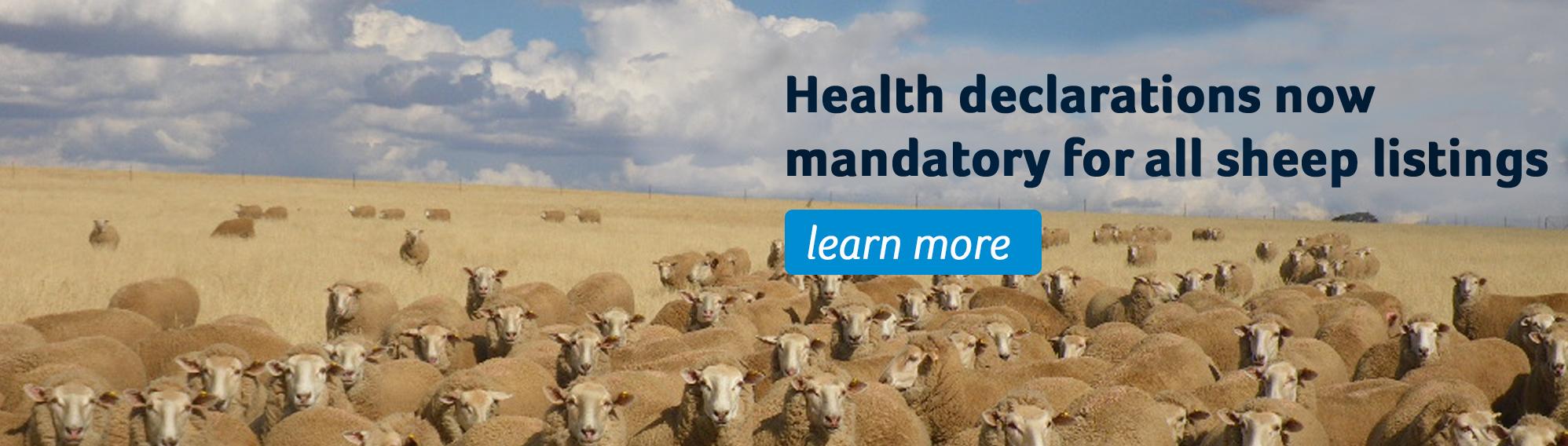 Health Declarations