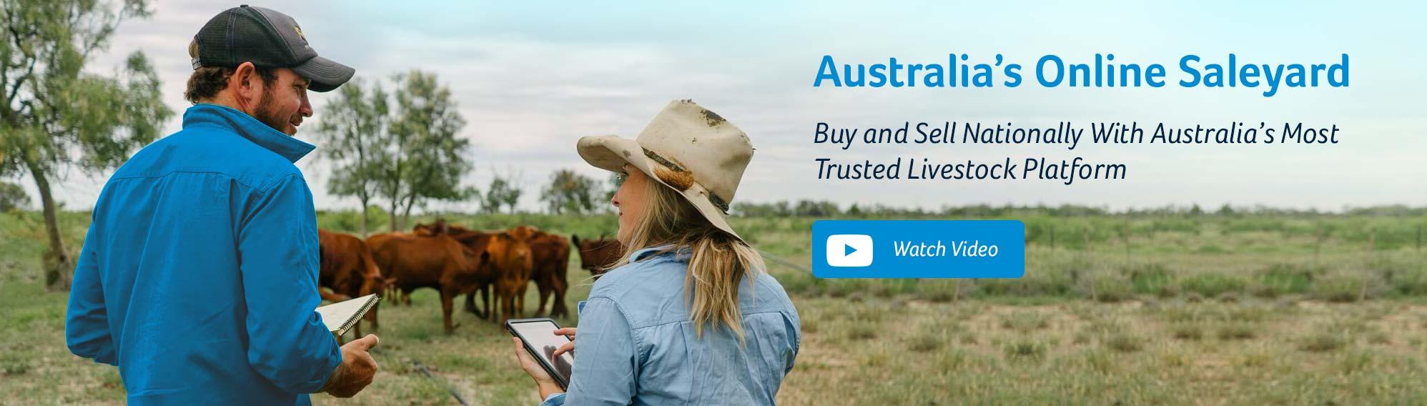 Australias Online Saleyard